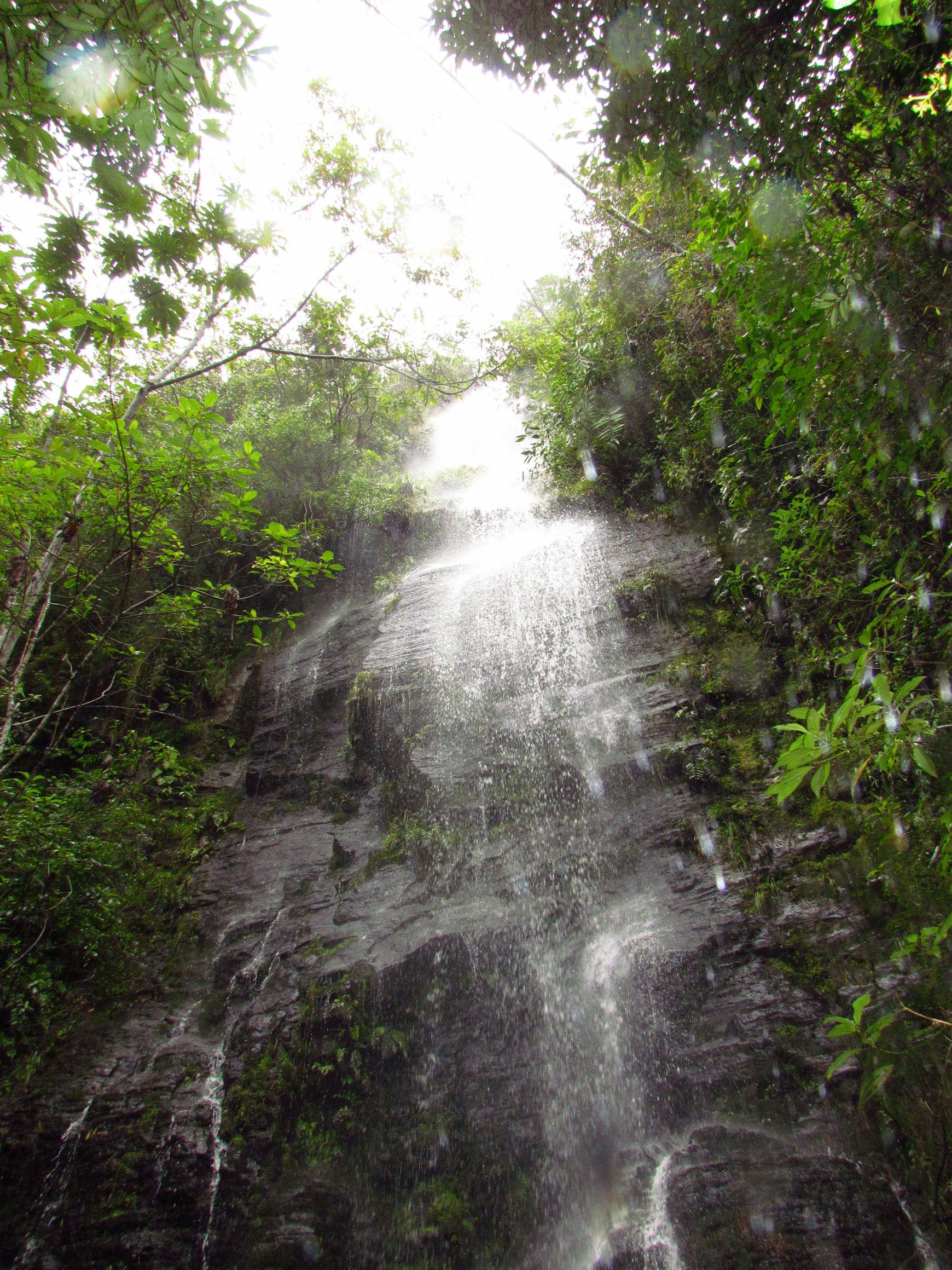 cascada-biodiversidadDGBAP-Marcos-Uzquiano