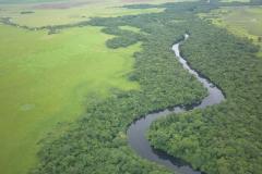 biodiversidadDGBAP